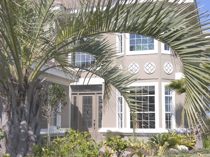View of custom home through palm tree
