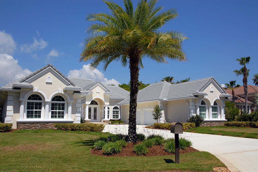 Large palm tree in front yard of a large light colored home.