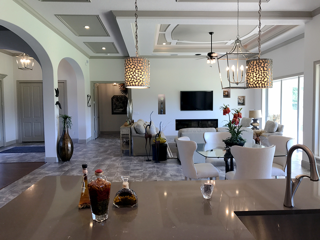 View from over kitchen island of modern furnished living room